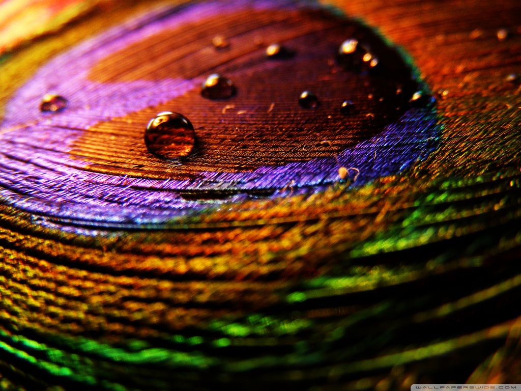 colorful_cloth-wallpaper-1024x768
