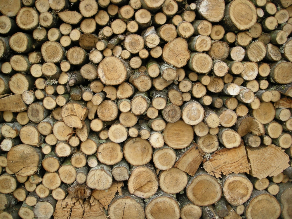 Stacked wood -kuva (kuvalähde: https://upload.wikimedia.org/wikipedia/commons/d/dc/Stacked_wood.JPG)
